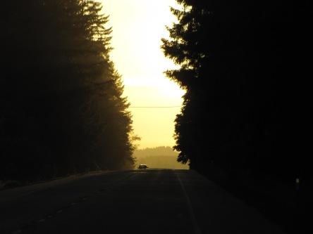 Oregon Part 1 160